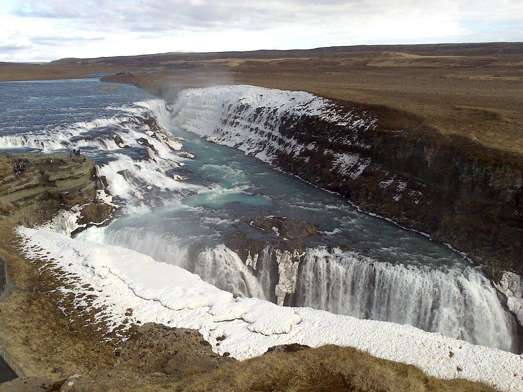 Islande, wild